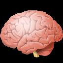 Body-Brain-icon