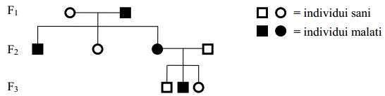 Albero genetica