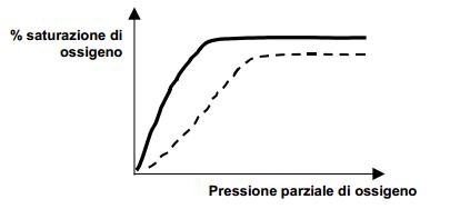 curva di saturazione con l'ossigeno dell'emoglobina (linea tratteggiata) e della mioglobina (linea continua).